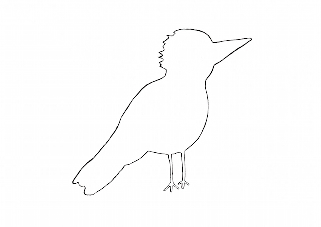 Ptak 2